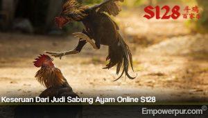 Keseruan Dari Sabung Ayam Online S128