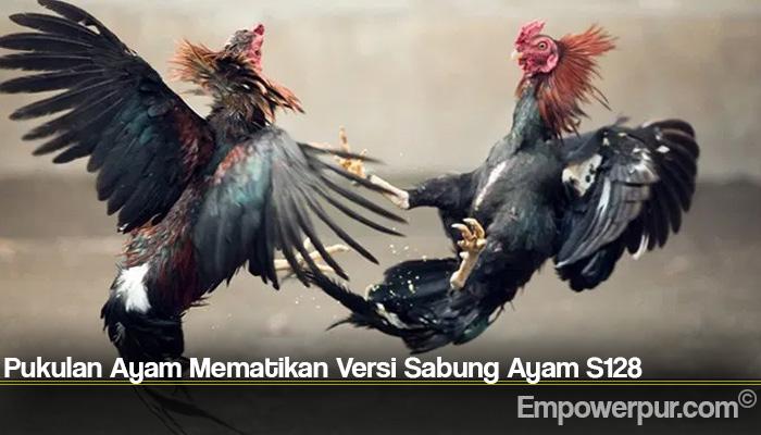 Pukulan Ayam Mematikan Versi Sabung Ayam S128