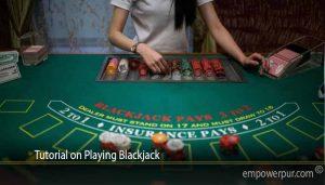 Tutorial on Playing Blackjack